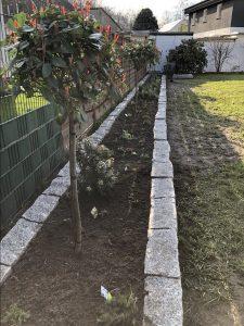 Staudenbeet bepflanzen